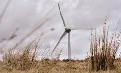Macphie Wind Turbines